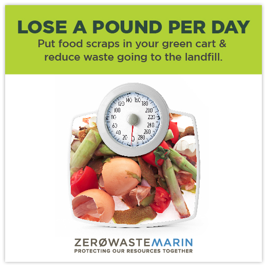 Lose a Pound Per Day ad